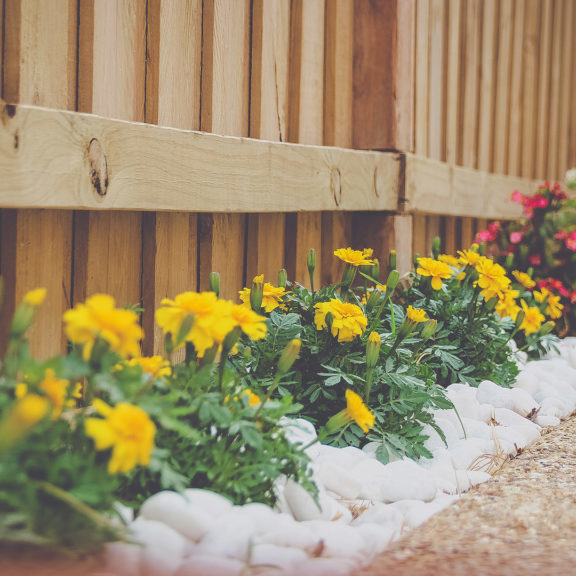 Flowers-on-Fence